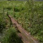 Footbridge over dyke